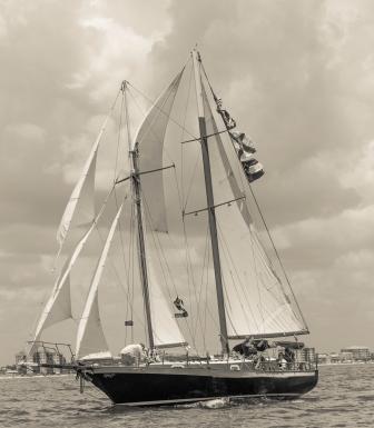 Black Pearl-9